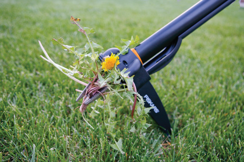Средство от травы во дворе своими руками