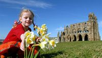 Spring at Whitby Abbey 2