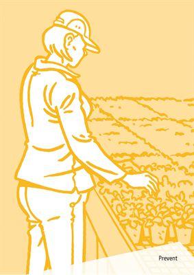 Omslag Jobba säkert inom trädgårdsodling