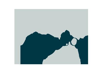 MJ Ferguson