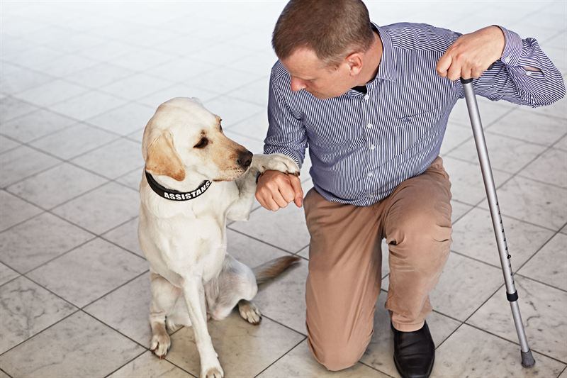 Magnus Berglund with his service dog Dixi