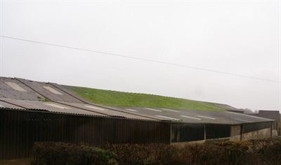 Langdon Farm roof 2