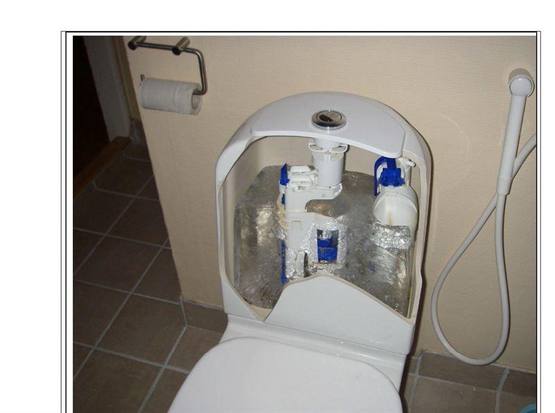 Bild frusen WC stol