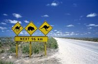 animal road sign 2