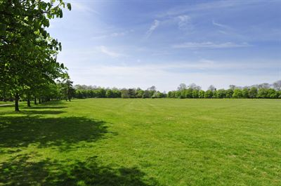 The beautiful green open space at Graylingwell Park