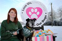 Jerry Green kennel assistant Leanne Sutherland with Odie, a male Staffordshire terrier cross