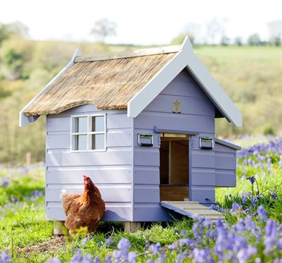Henny penny hen houses launches exclusive farrow ball for Henny and paint