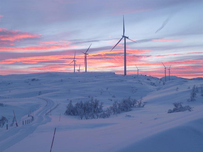 Nygårdsfjellet vinter