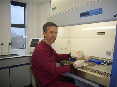 Dr Henrik Stotz Marie Curie Fellow at University of Hertfordshire