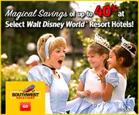 Walt Disney World Package Deal