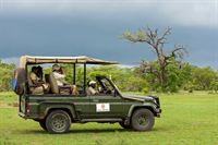 Serena Safari  