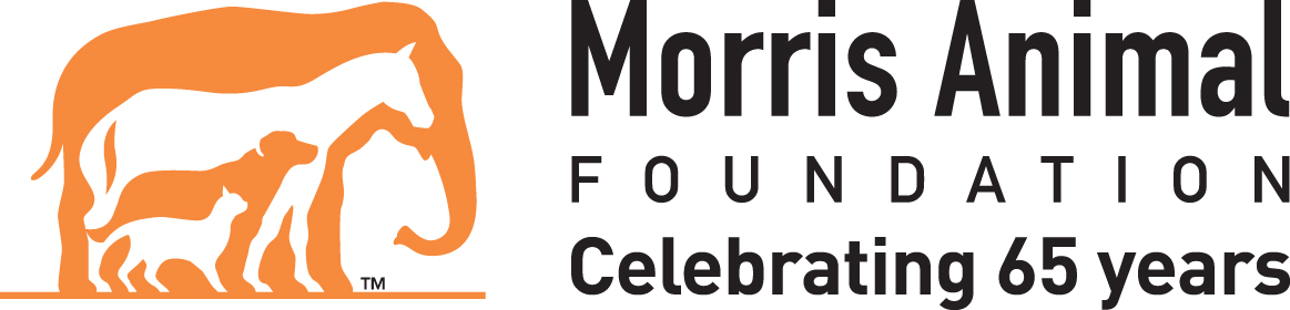 Morris Animal Foundation