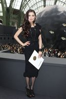 Rebecca Wang attends the Chanel Fall/Winter 2013 Ready-to-Wear show as part of Paris Fashion Week at Grand Palais on March 5, 2013 in Paris, France
