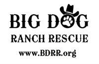 BDR Ranch logo