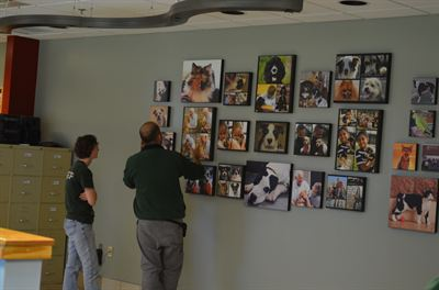 Photography Wall by Snapfish