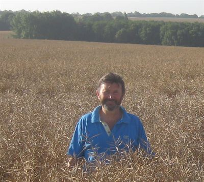 Andrew Davies in a crop of oilseed rape this harvest