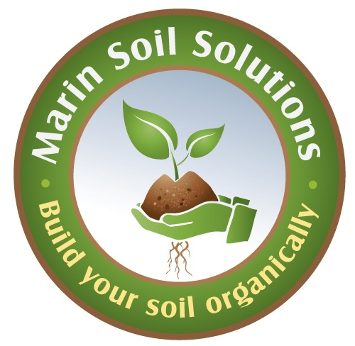 Marine Soil Solutions