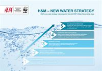 Water Strategy - ladder