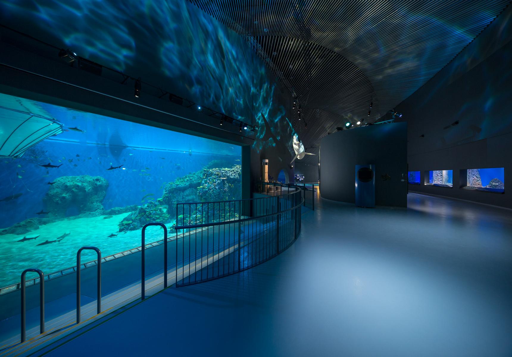 Den bl planet the blue planet image 03 flowcrete for Floor aquarium