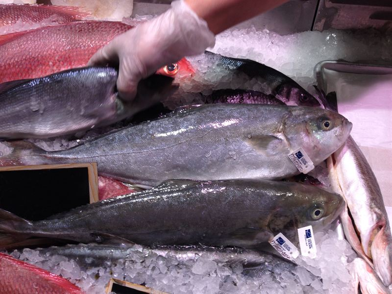 New yorkers are the first in history to eat sushi grade for Where to buy sushi grade fish nyc