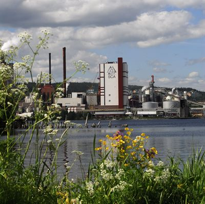 strand Pulp Mill
