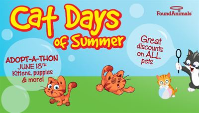 Found Animals Foundation Cat Days of Summer Adopt-A-Thon