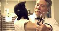 Meet a Scientologist—Canadian Pet Vet Donald Bissonnette