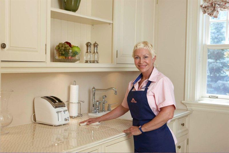 Kitchen Maid : Kitchens are germ hot spots. Molly Maid recommends cleaning with ...