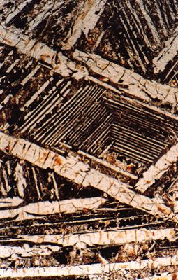Komatiite section photomicrograph