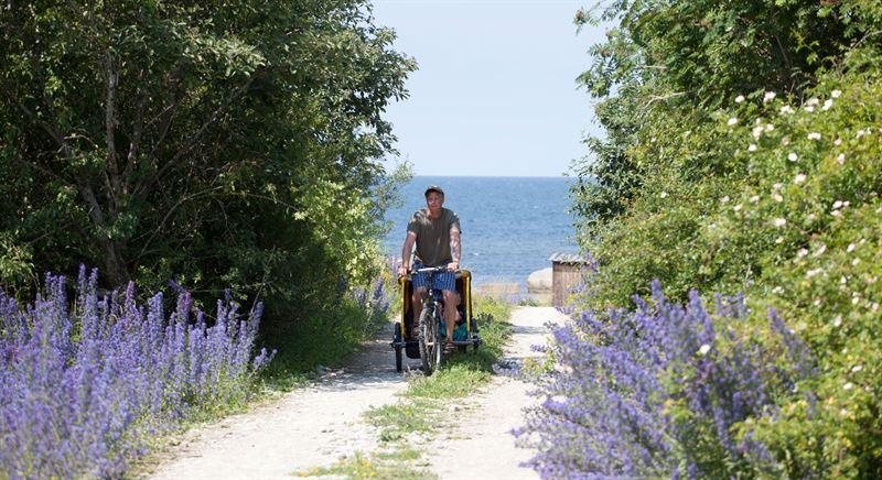 Bild sommarutflykt p cykel