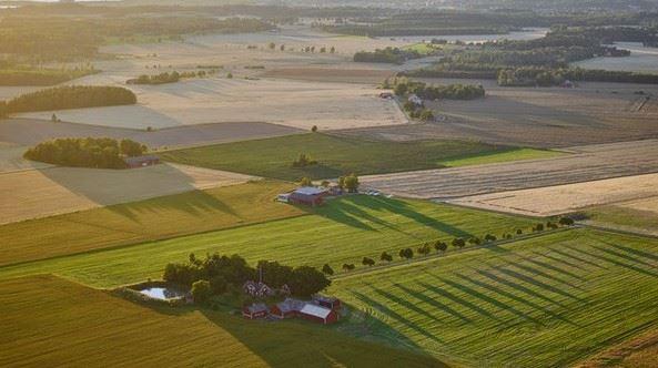 Jordbrukslandskap frn ovan