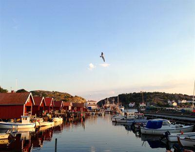 Hamnen val forankrad i stockholmarnas hjartan