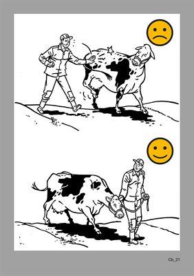 Illustration från boken om djurskötsel