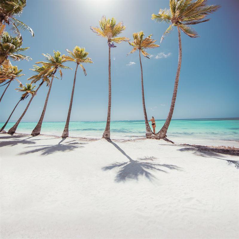 dominikanska republiken väder december