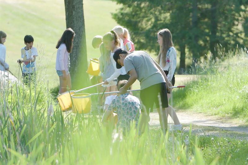 Bild tagen vid pilotprojekt dr Motala GK bjuder in Smedsbyskolan att ha undervisning i golfanlggningens natur