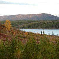 Höstlandskap i Jämtland