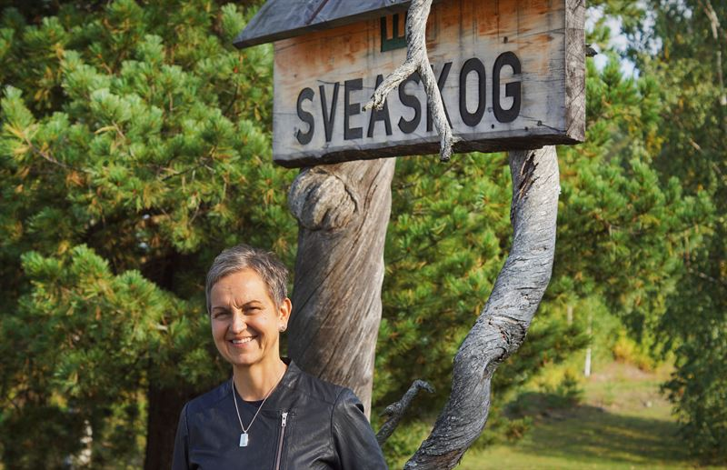 Hannele Arvonen vd Sveaskog