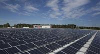 Solcellsanläggning på en Willys-butik i Uppsala