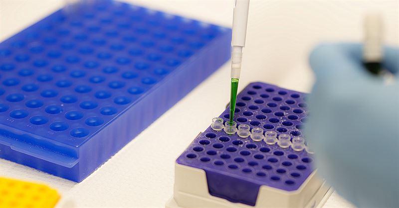 Kromosominnehllet i upp till 96 celler kan underskas p en gng