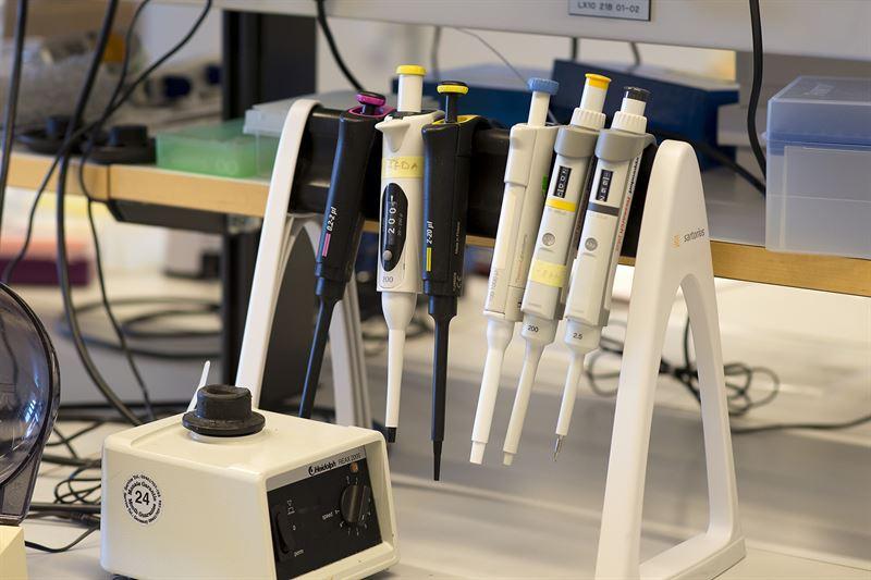 Laboratoriebnk med pipetter fr provberedning