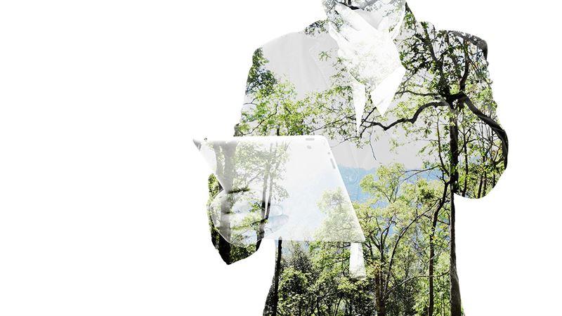 Digital nature r Sprinkles nsta steg mot en hllbar tillvxt