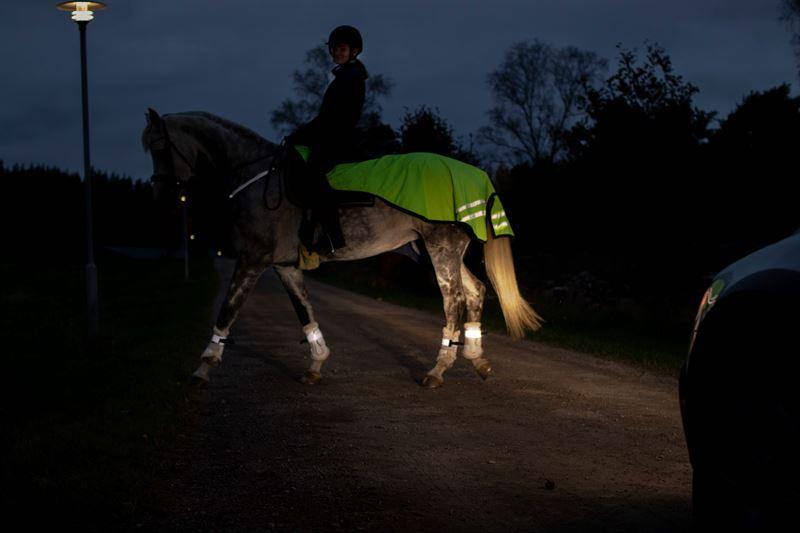 Hest med reflekser