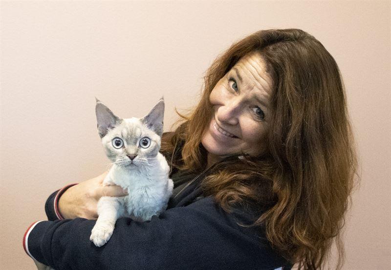 Marianne Broholm Einarsen tipser katteeiere
