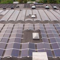 Rekordstor elproduktion i Malmös största solcellsanläggning