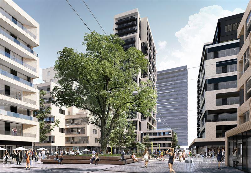 Frederiks Plads II Royal Oak 3