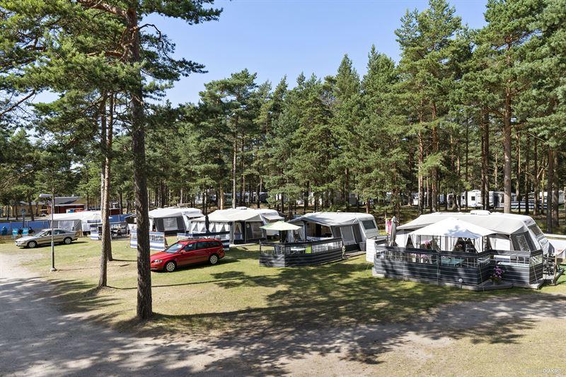 First Camp storsatsar