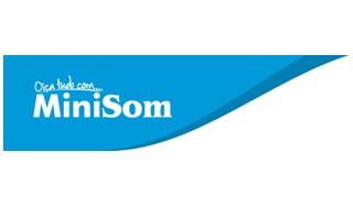 MiniSom