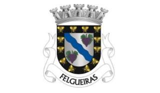 0896d8c47 Câmara Municipal de Felgueiras Praça da República - Margaride 4610-116  FELGUEIRAS +351 255 318 000 +351 255 318 170 http://www.cm-felgueiras.pt