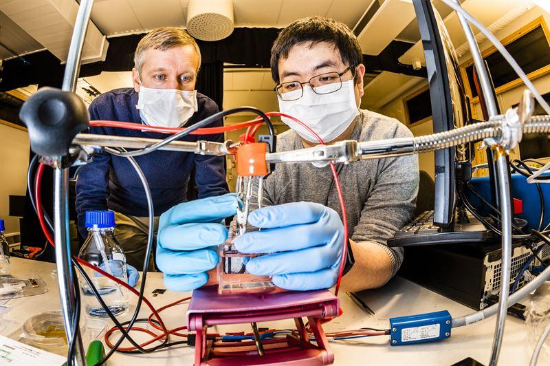 Magnus Jonsson och  Shangzhi Chen vid Laboratoriet fr organisk elektronik