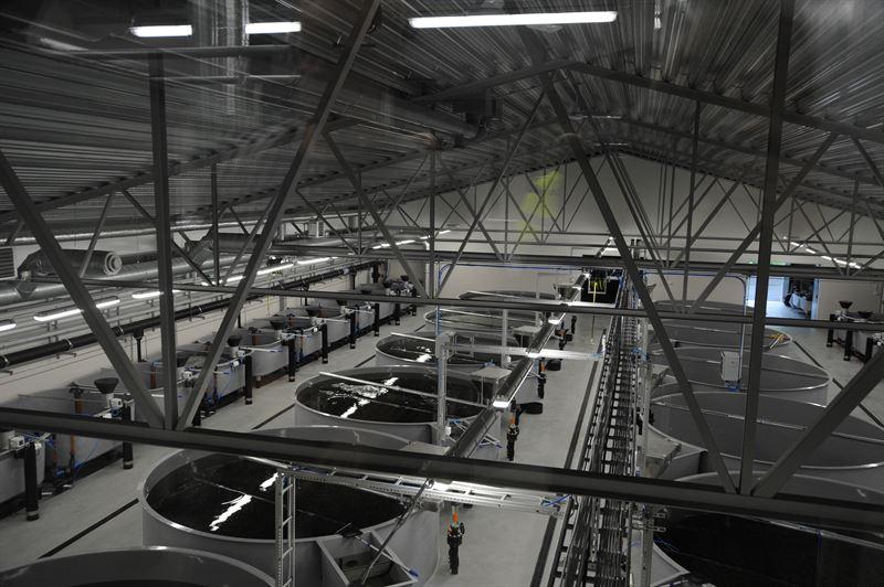 Gammelkroppa interiör2